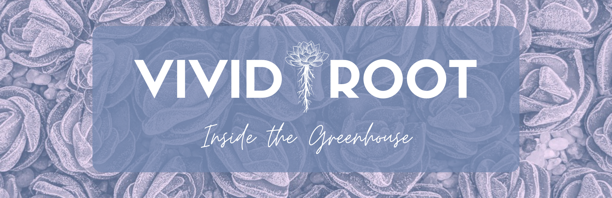 Vivid Root - Inside the Greenhouse